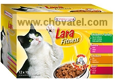 Lara Fitness Multipack A 12x100g