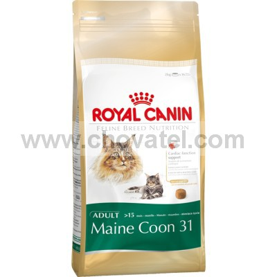 Royal Canin FBN Main Coon 10kg